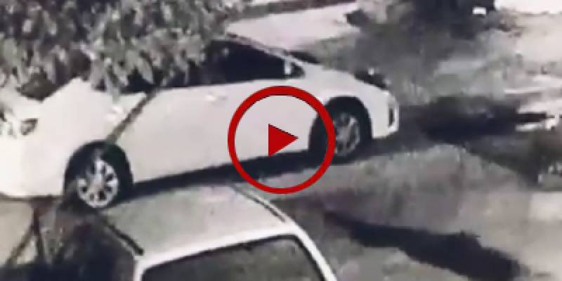 Security guard flees for life after seeing armed robbers (VIDEO)
