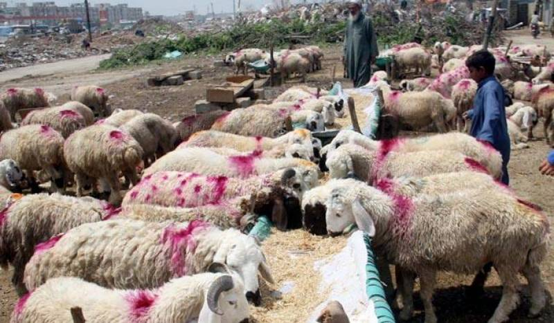 Eidul Azha likely to fall on August 22: Met office