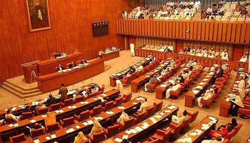 Senate unanimously adopts resolution against blasphemous caricatures