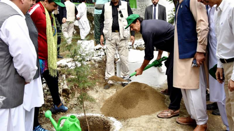 VIDEO: PM Imran Khan formally kicks off 'Plant for Pakistan' drive in Haripur