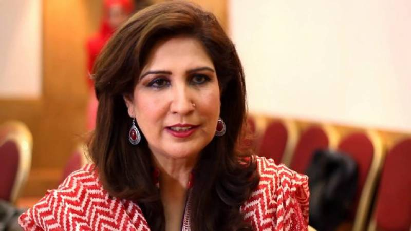 Shehla Raza's bigotry exposed with her tweet against minority member of Economic Advisory Council