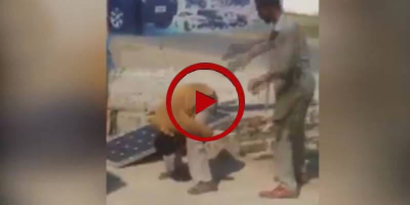 Motor mechanic beats junior worker in Gujrat (VIDEO)