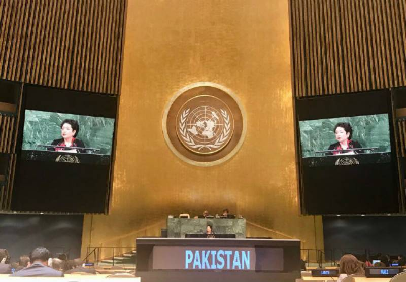Pakistan's three disarmament-related resolutions garner overwhelming support in UNGA's panel