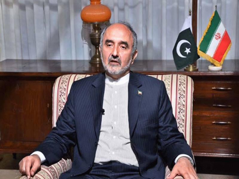 Pakistan, Iran will have to face terrorism issue jointly: Mehdi