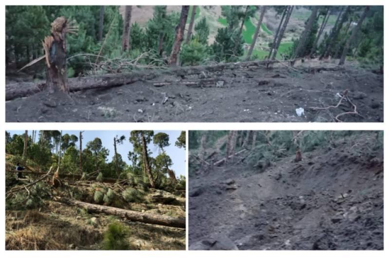 Pakistan registers FIR against Indian pilots for destroying trees in Balakot