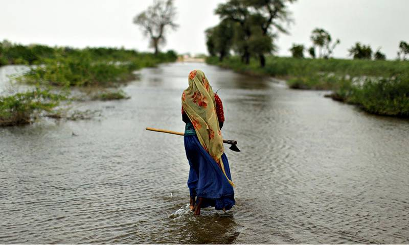 Climate Change Authority all set to announce 72 posts