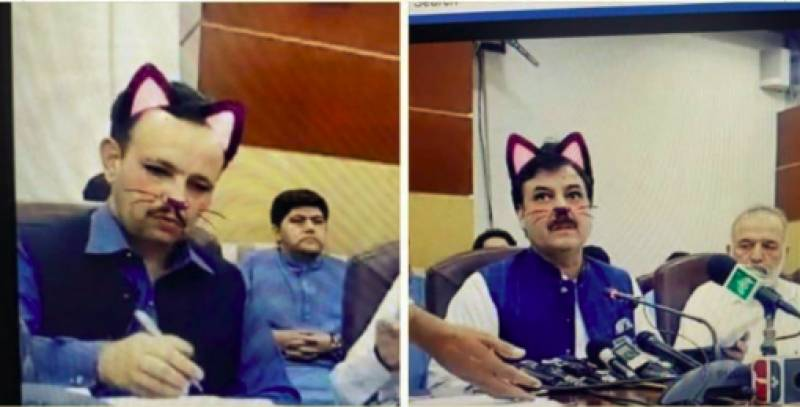 PTI releases official statement on K-P govt 'cat' filter blunder