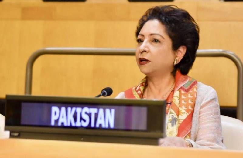 Pakistan calls for UN action to combat Islamophobia and hate speech