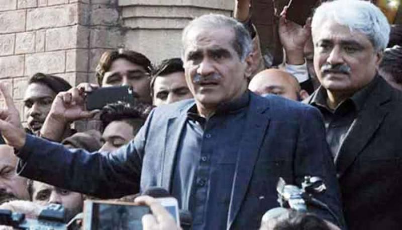 Accountability court extends Saad, Salman Rafique's judicial remand by 14 days
