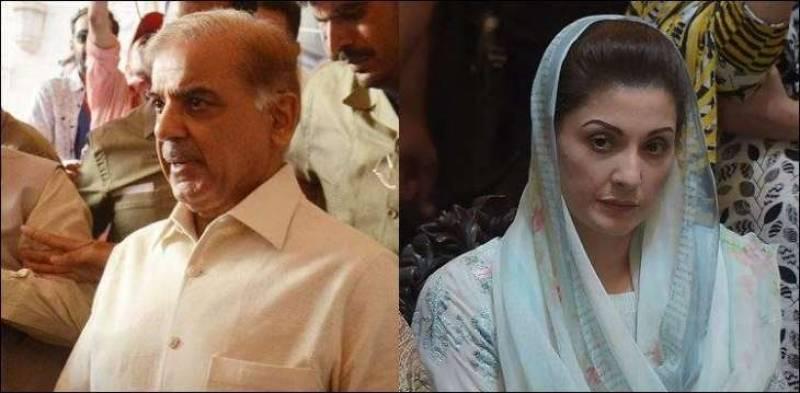 Maryam, Shehbaz allege PM Imran's hand behind Rana Sanaullah's arrest