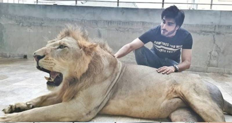 Imran Abbas responds to criticism after posing with a lion