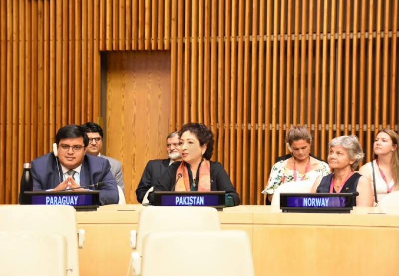 Pakistan elected as vice president of UN Economic and Social Council