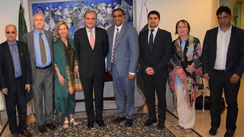 FM Qureshi stresses to sensitize int'l community about deplorable HR situation in Occupied Kashmir
