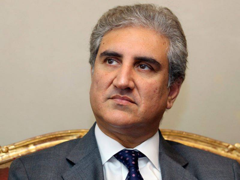 FM Qureshi seeks OIC role to save Kashmiris from Indian brutalities