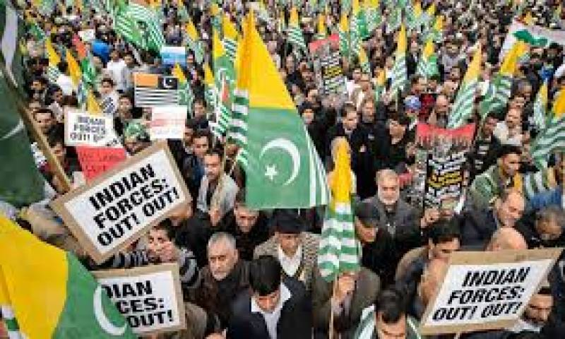 US Muslims rally to express solidarity with Kashmiris under Indian occupation