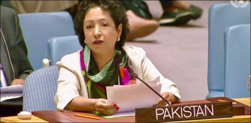 Pakistan to use all diplomatic options to ensure justice to Kashmiris under Indian occupation