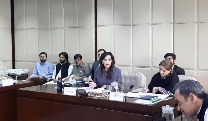Special committee brainstorms on CPEC projects, discusses bill to establish CPEC authority