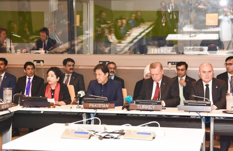 UNGA 74: Pakistan, Turkey call for effective measures to counter hate speech, Islamphobia
