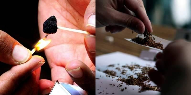 Five drug peddlers arrested as ANF seizes massive drug haul