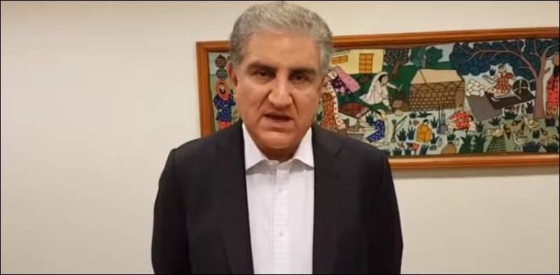 FM Qureshi says JUI-F's protest on Oct 27 would hurt Kashmiris