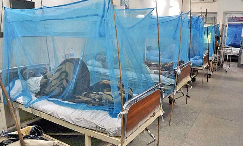 Number of dengue patients across Pakistan tops 50,000