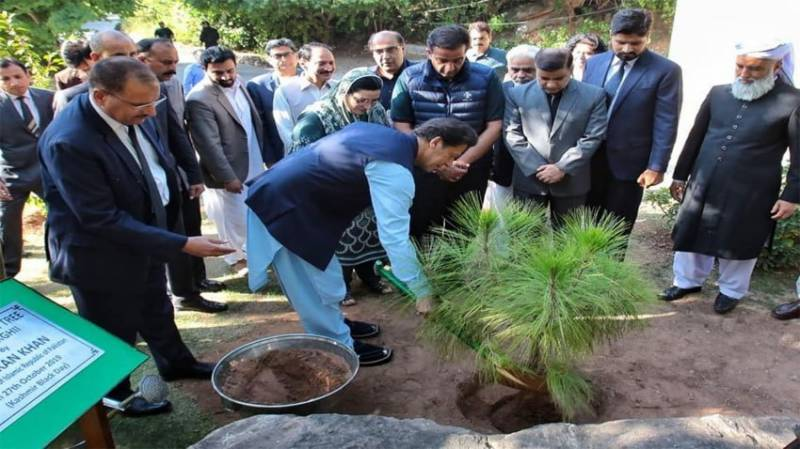 PM Imran plants Kashmir Freedom Tree in Islamabad