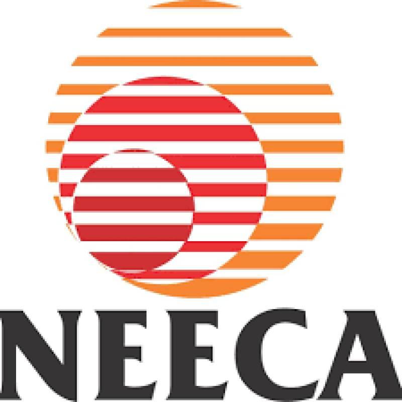 NEECA holds workshop aimed at enhancing energy efficiency of electric motors