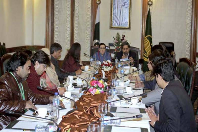 PTI steps up for presenting soft image of Pakistan to world