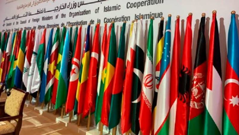 OIC expresses serious concern over citizenship rights, Babri Masjid case, issues affecting Muslims in India