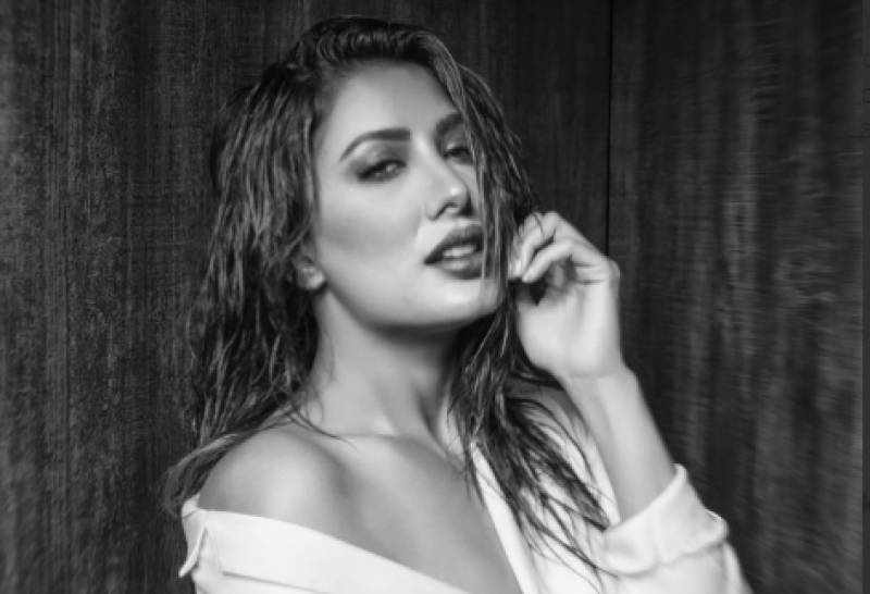 Mehwish Hayat has no patience for bullies and here's proof