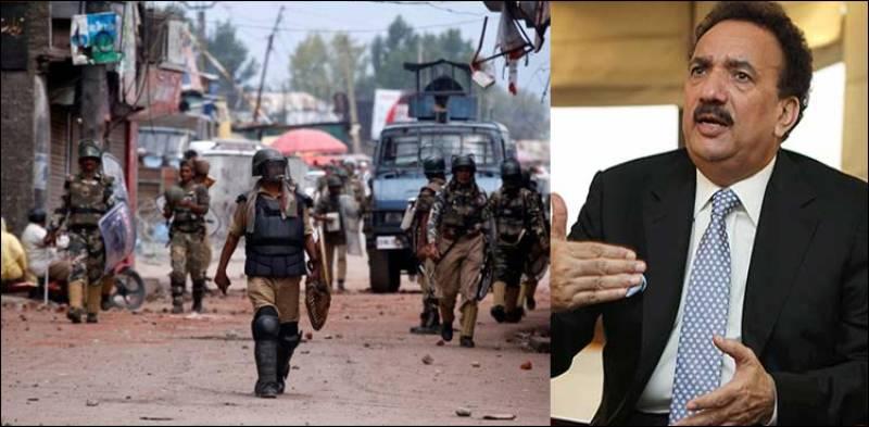 Rehman Malik to make a film on Kashmir issue