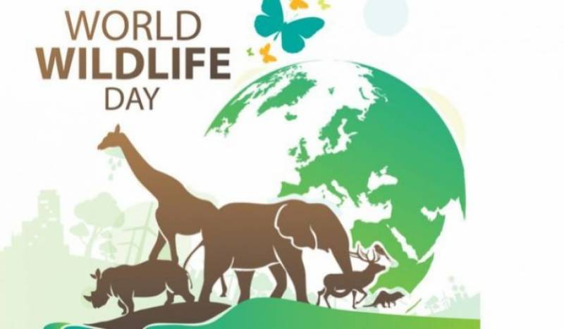 Pakistan to mark World Wildlife Day for sustaining all life on earth