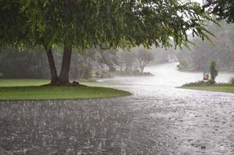 Heavy rains likely in parts of country from Thursday