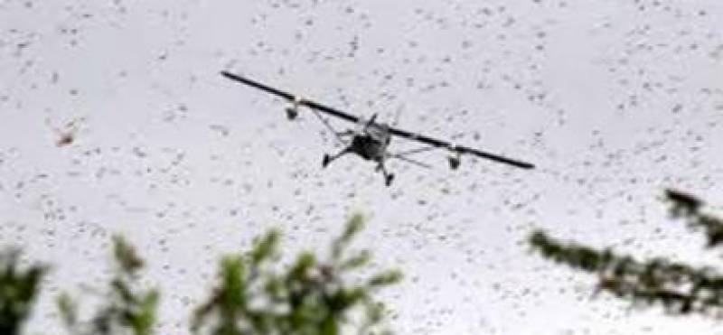 NDMA to acquiring 15 planes to spray on locust-hit areas countrywide