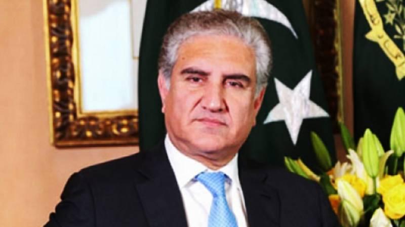Pakistan stands resolute, vigilant against destabilizing forces: FM Qureshi
