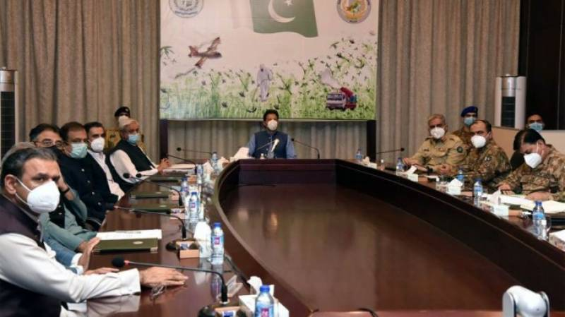 PM Imran approves 2nd phase of locusts control plan to compensate affected farmers