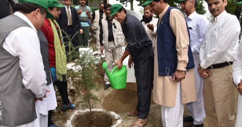 PM Imran to inaugurate Pakistan's largest monsoon plantation drive