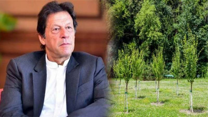 PM Imran inaugurates Monsoon Tree Plantation Campaign 2020 in Kahuta today