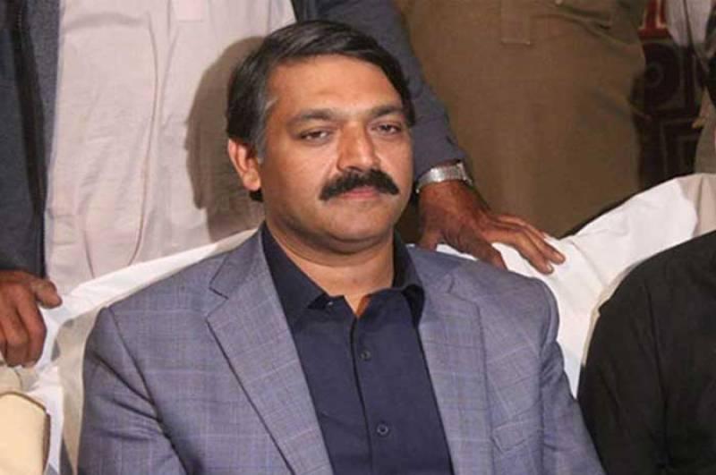 Punjab Wildlife and Fisheries Minister Malik Asad Ali Khokhar resigned