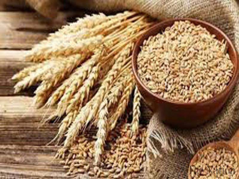 Wheat import allowed amid rising flour prices in Pakistan