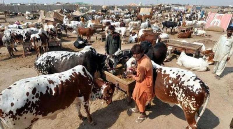 Govt announces 3-day holiday on Eid-ul-Adha 2020