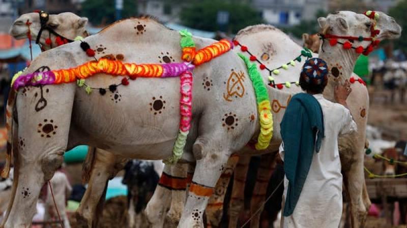 Pakistan celebrates Eid-ul-Azha