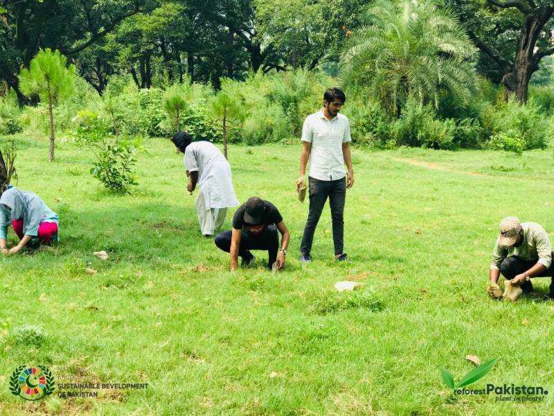 Reforest Pakistan drive launched in Islamabad