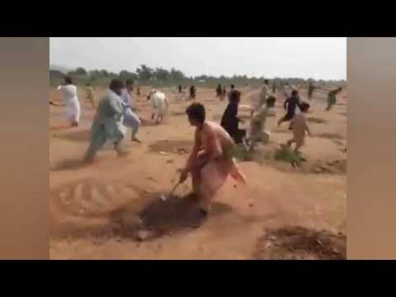 KP police in action after video of men uprooting saplings in Pakistan goes viral