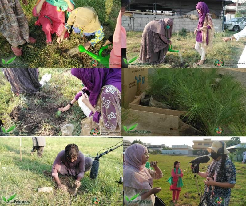 NASD Pakistan conducts tree plantation drive in Mardan