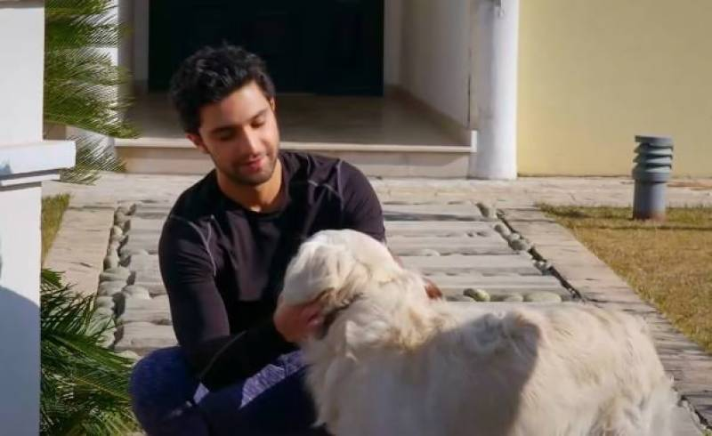 Ahad Raza Mir urges everyone to treat animals with love and affection