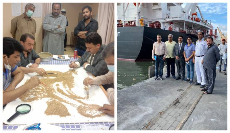 First wheat import vessel discharged after detailed satisfactory inspection by concerned authorities