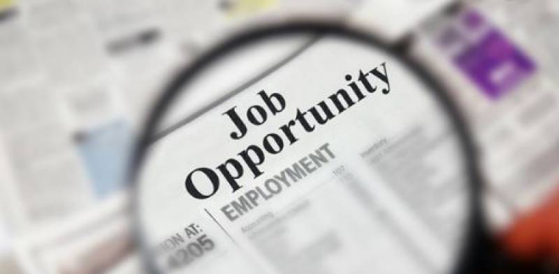 Job search made easier for Pakistani youth with this newly launched portal