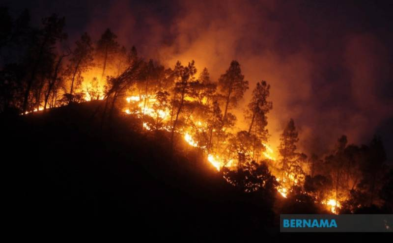 Massive wildfires in US West Coast kill 23 people