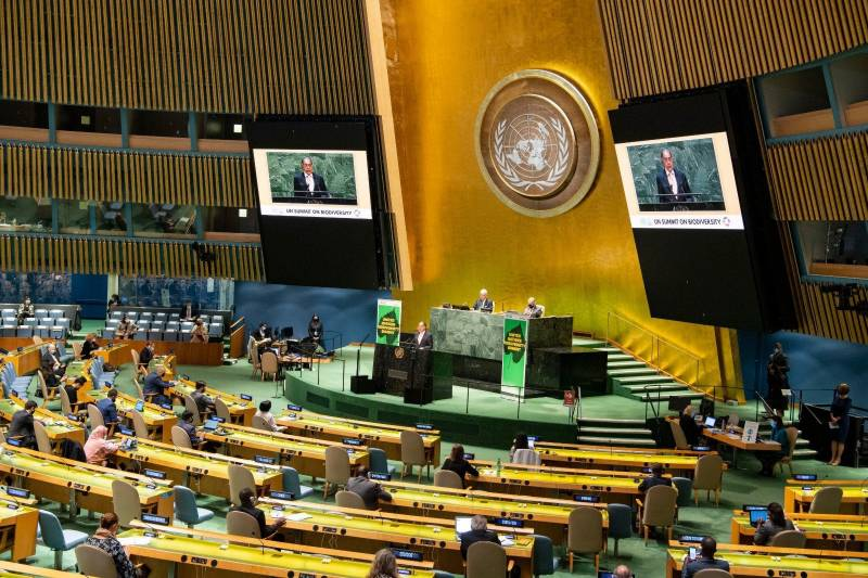 At UN, Pakistan urges for fiscal space for developing nations to recover from Covid-19